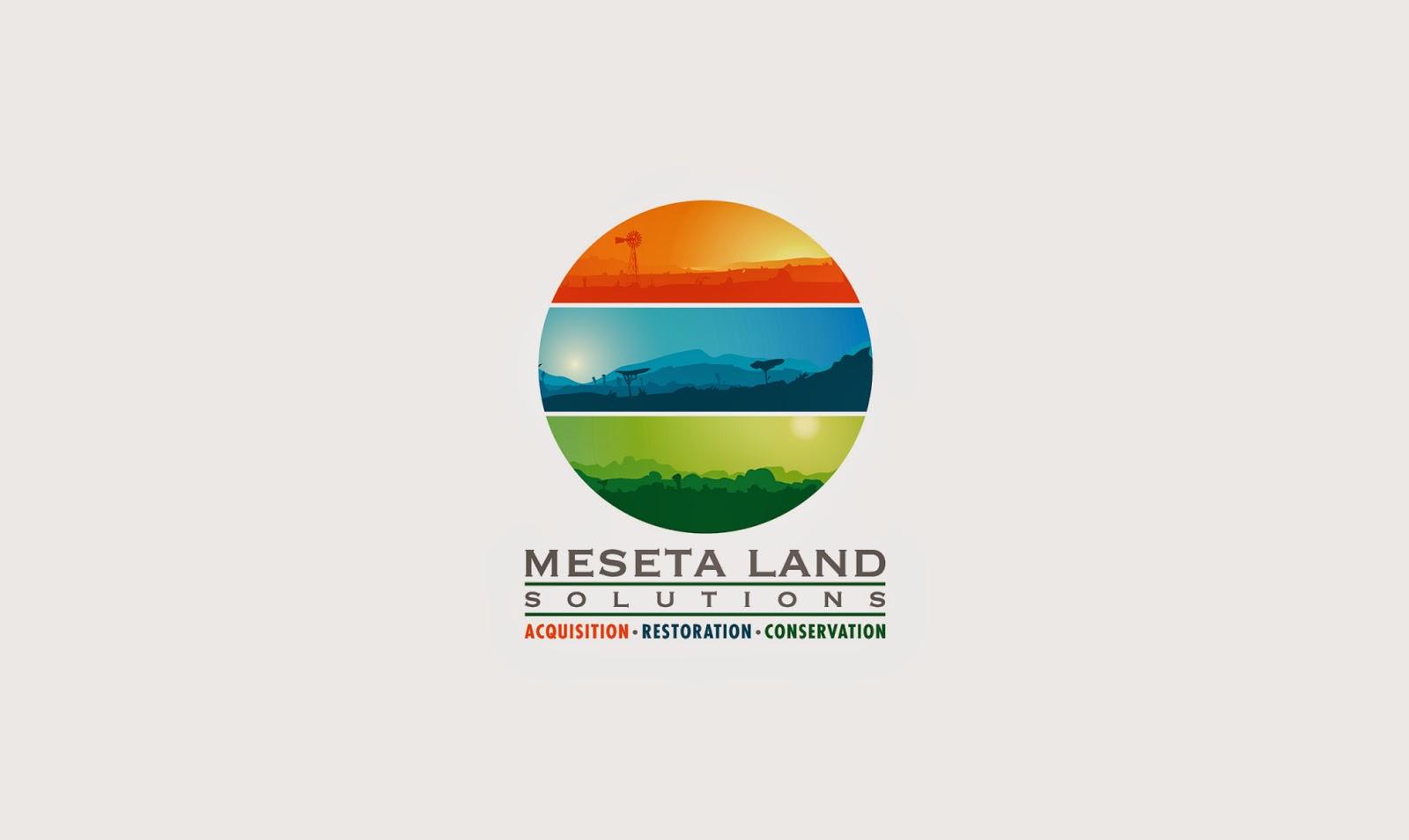 Austin Logo Designs  Graphic Designer  Austin Texas