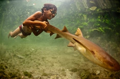 Bajau Laut  swimming with fish