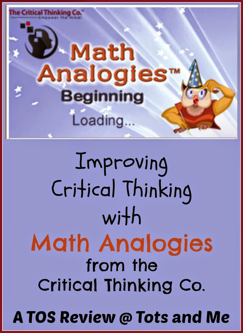 critical thinking company reviews