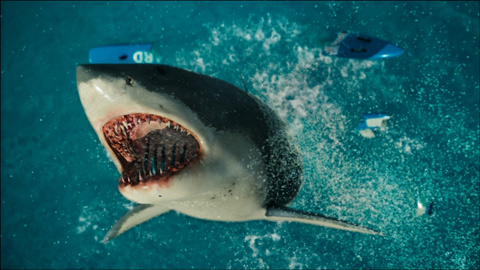 effet de projection requin