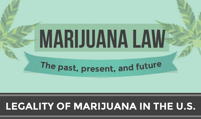Marijuana Laws: The Past, Present and Future