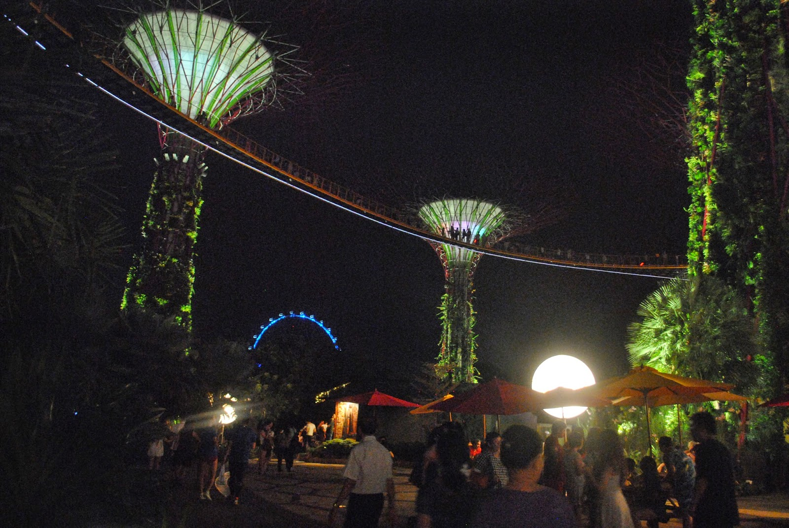 gardens by the bay supertree grove light show