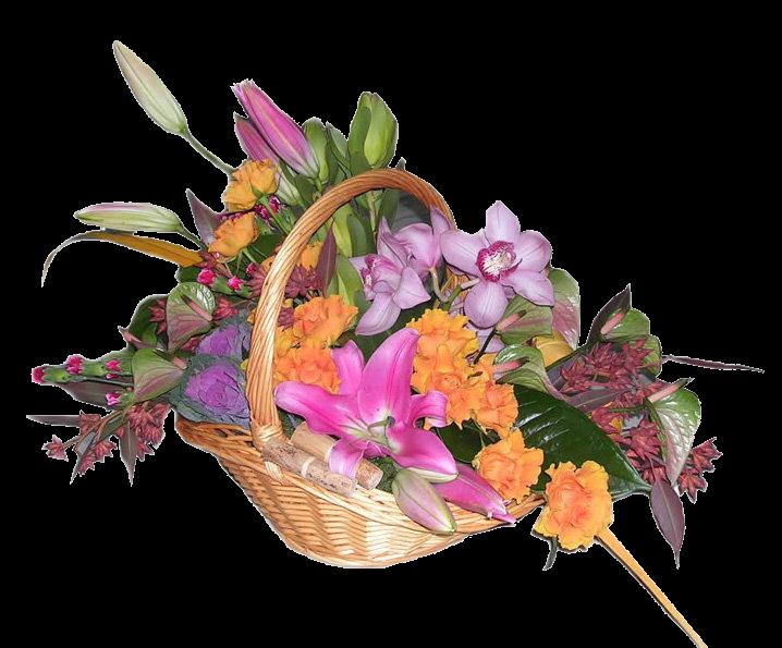 Konu güzel li güller çiçekler