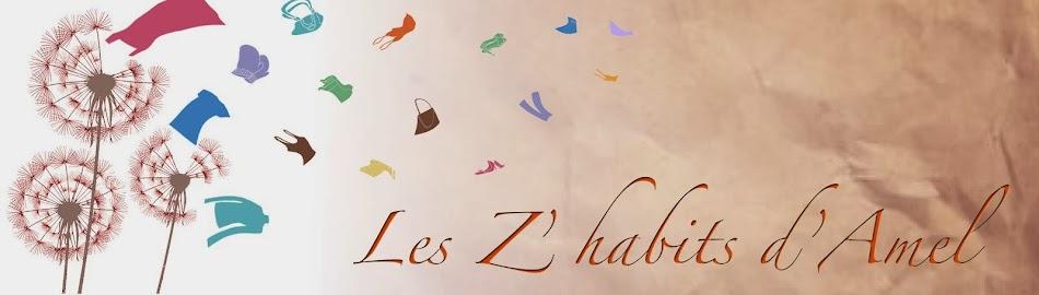 Les Z'habits d'Amel