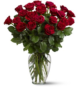 Order Mothers Day Roses