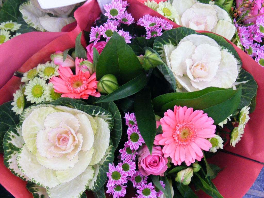 Flower wallpapers free image mall flower wallpapers izmirmasajfo