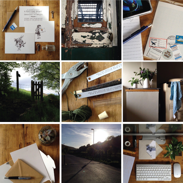 Alfies Studio Instagram  - a mix of life, work, adventures and botanical findings