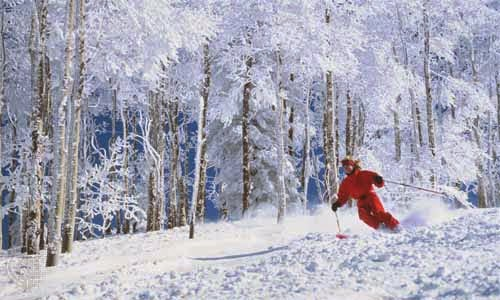 http://kids.britannica.com/comptons/art-57025/Colorados-fine-light-snow-attracts-millions-of-skiers-every-year