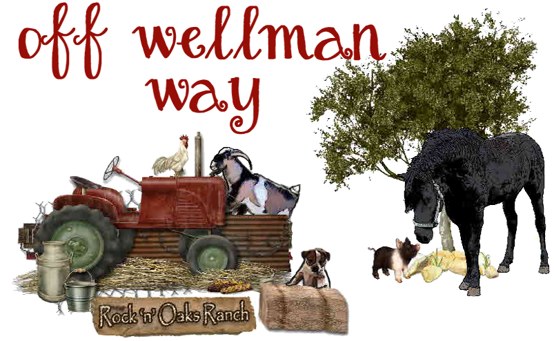Off Wellman Way