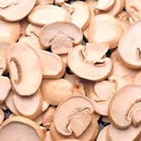 Mushroom - agarics | Agaricus | Agaricus bisporus | Ascomycota | Puffball Stinkhorn Morel