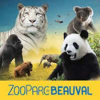 Bon plan zoo de beauval