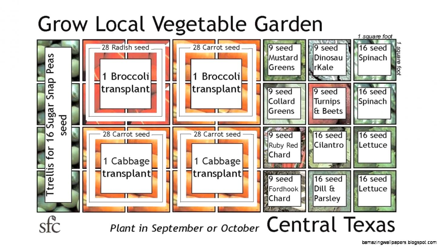 Vegetable Garden Layout Square Foot  The Garden Inspirations