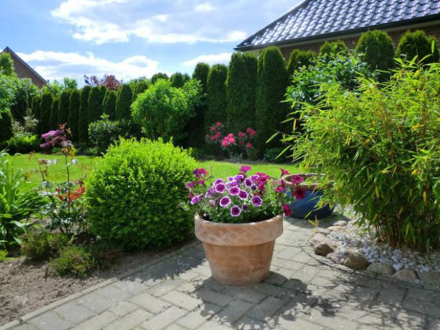 chăm sóc vườn nhà