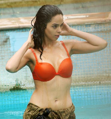 Mallika Sherawat - Mallika Sherawat Double Dhamaal Bikini Wallpapers