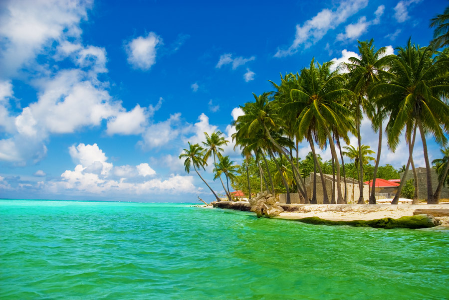 Download this Maldives Islands picture
