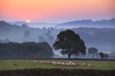 Nidderdale-Morning-Extraction