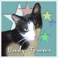 Brody  RIP