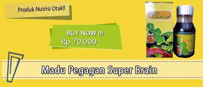madu pegagan super brain