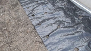 Stendere il telo bucato sopra la superficie dell'orto