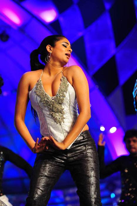 priyamani at lux sandal cinemaa awards actress wallpapers