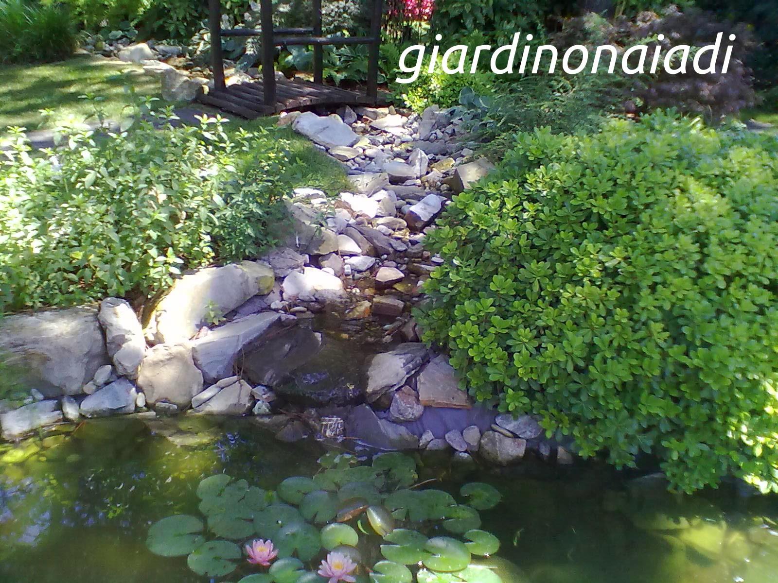 Il giardino delle naiadi cascate e ruscelli for Costruire laghetto in giardino