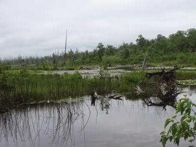 Wycamp Lake