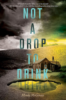 Not a Drop to Drink & Twinmaker Book Reviews