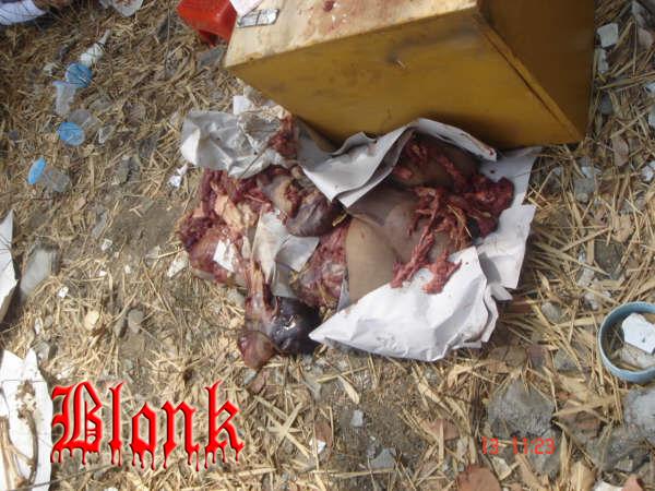 Setelah melihat Foto-foto Mutilasi Sadis Praktek Mahasiswa Kedokteran ...