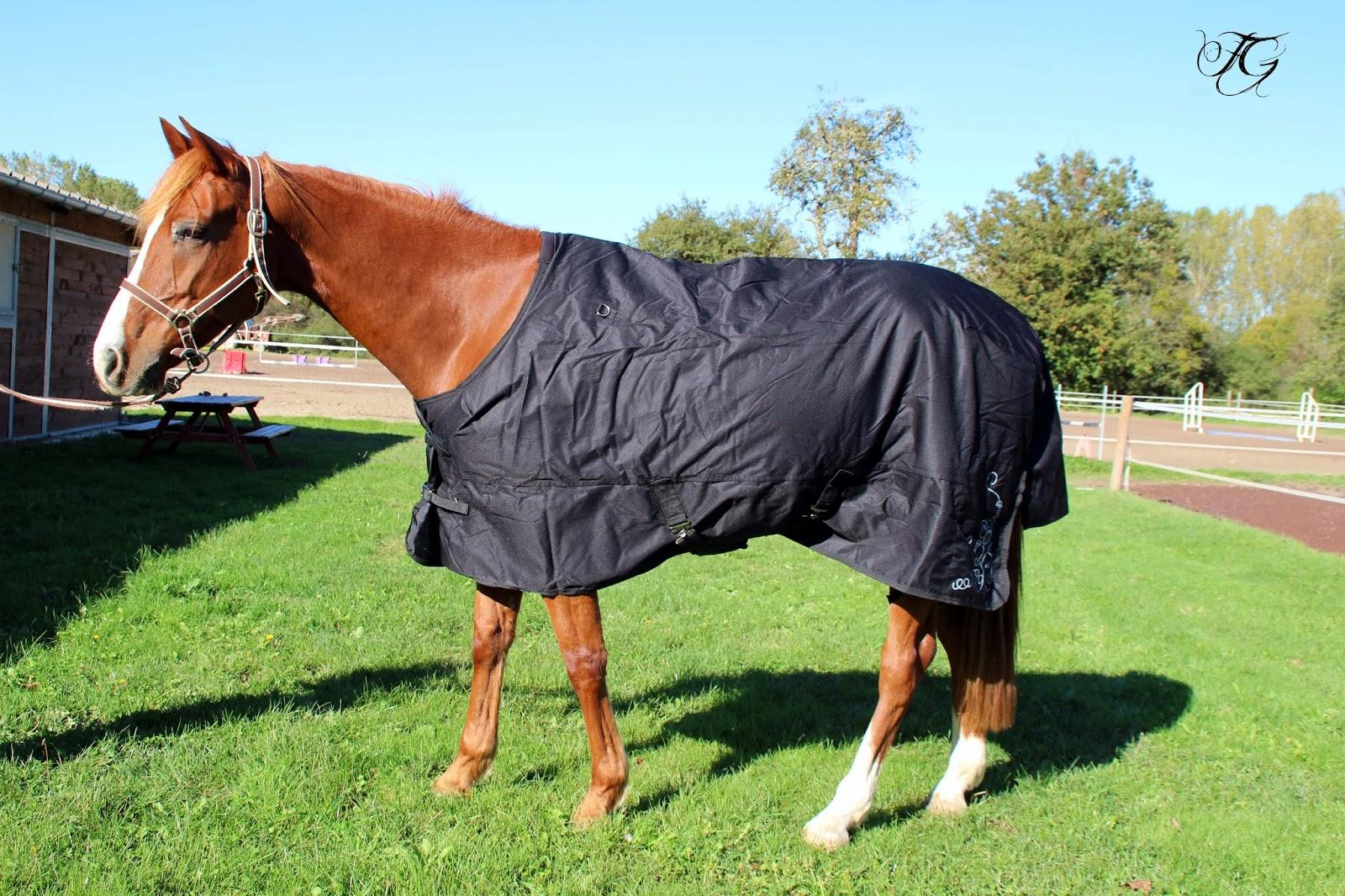 doggychon et ses amis c t cheval couvertures et couvre reins. Black Bedroom Furniture Sets. Home Design Ideas
