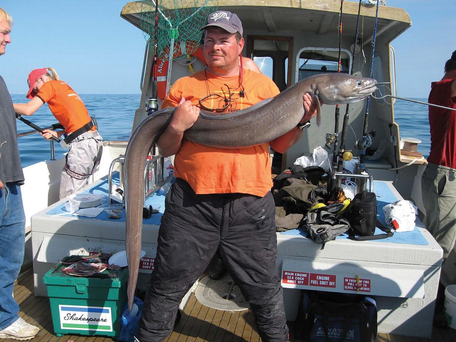 прогноз клева рыбы в никопольском районе