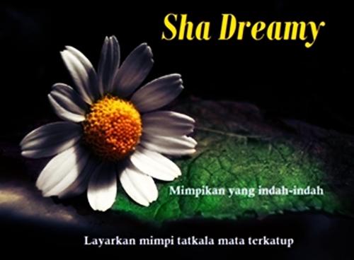 !                                                                               Sha Dreamy