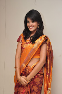 Model krupali in silk saree at cmr ashadam event 006.jpg