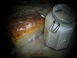 sourdough and starter