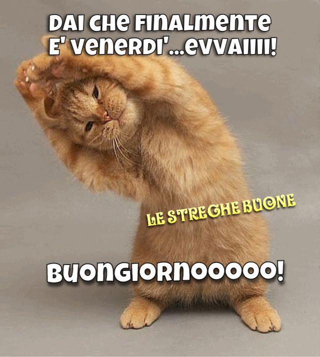 Le streghe buone the original pagina facebook i link for Buongiorno divertente sms