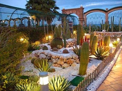 12 maravillosos jardines de cactus como sembrar el