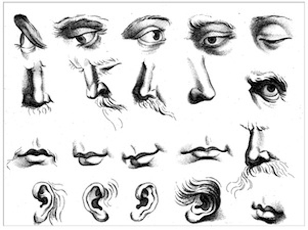 Figure Drawing How To Draw Eyes Nose Ears And Mouths