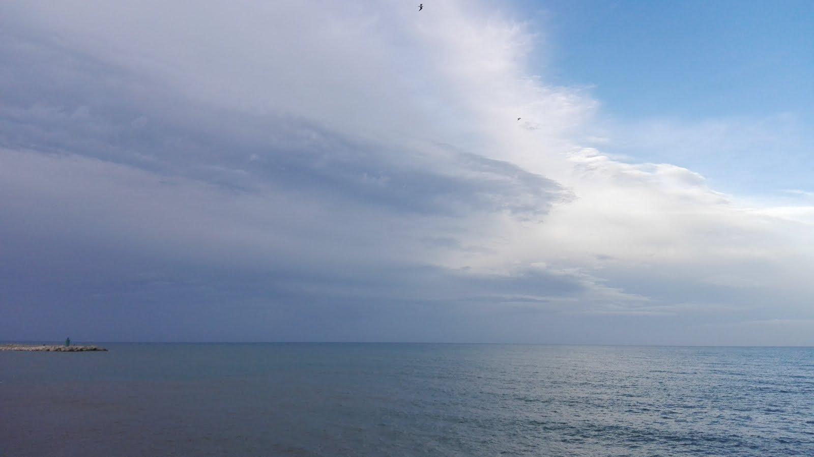 mar adriatico, terra di bari