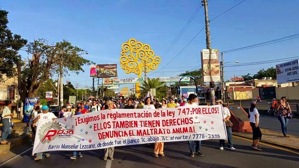 Animales en Nicaragua