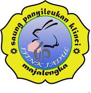 Saung Logo