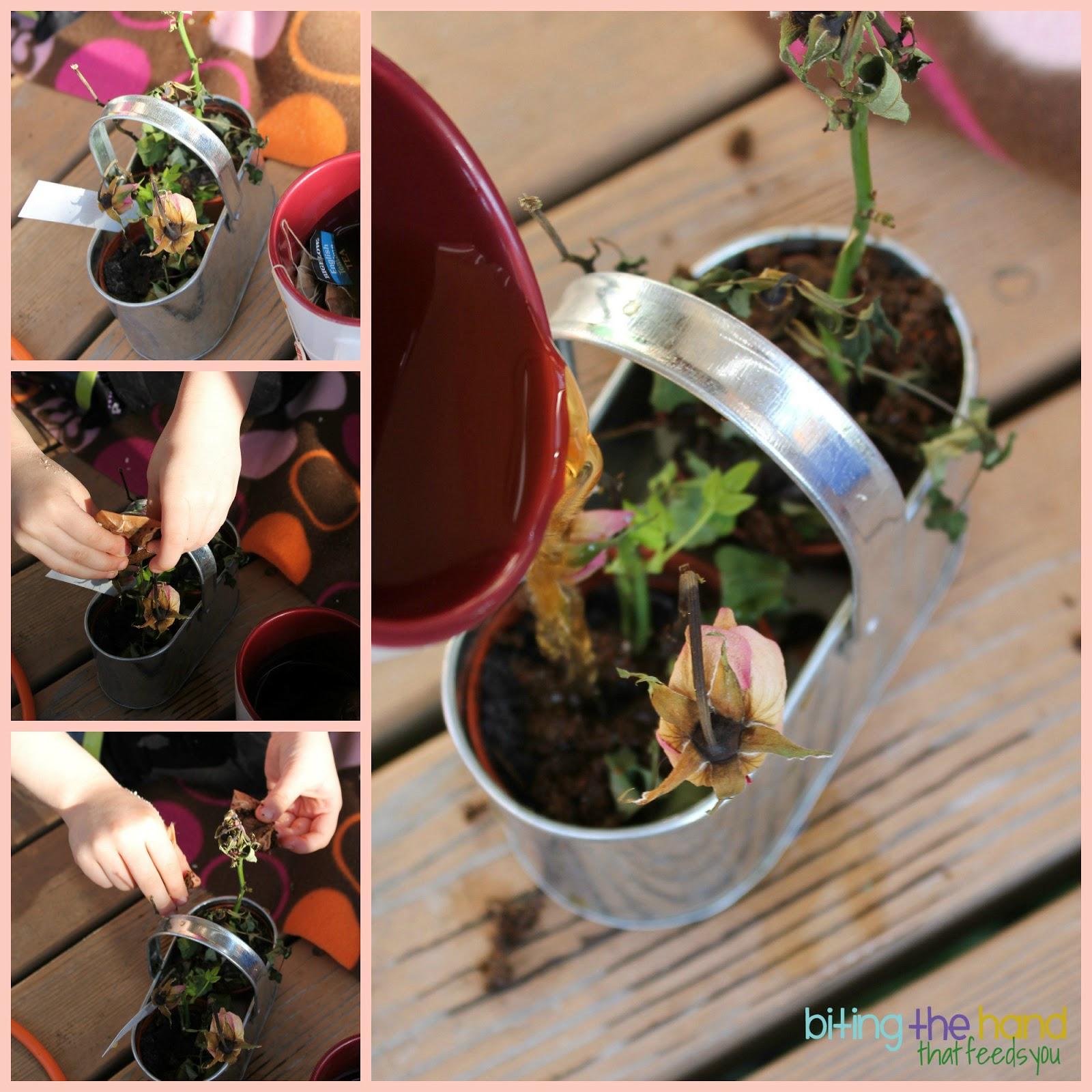 Biting The Hand That Feeds You Earth Day Garden Par Tea