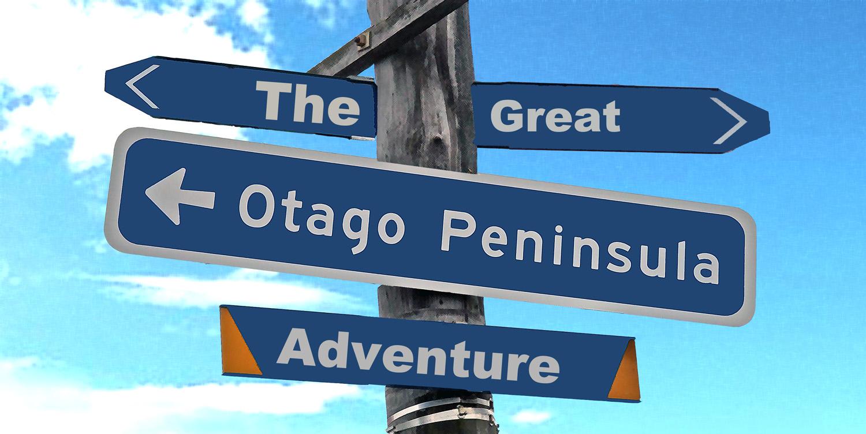 The Great Peninsula Exploration