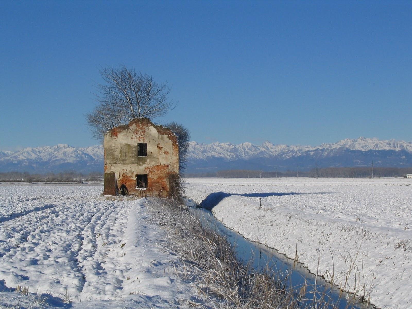 Il piacere di vagabondare la casa dell 39 albero una for Vieni da me di chi era la casa misteriosa