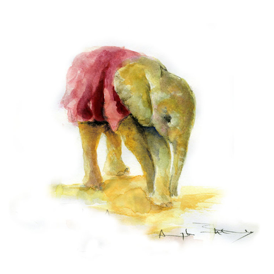 Safari Fusion blog | Elephant Watercolours by Angela Sheldrick | Beautiful original artworks from Kenya