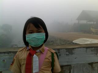 5 Kerugian Besar yang Disebabkan Oleh Kebakaran Hutan di Indonesia