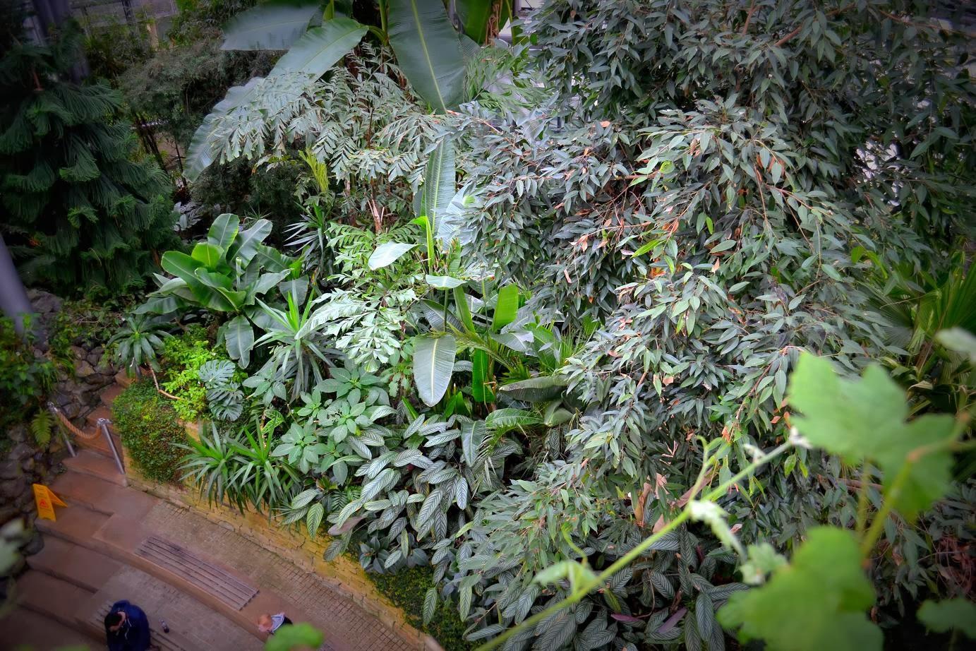 small voyager winter garden sunderland uk
