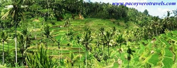 Viaje a Bali y Gili Trawangan
