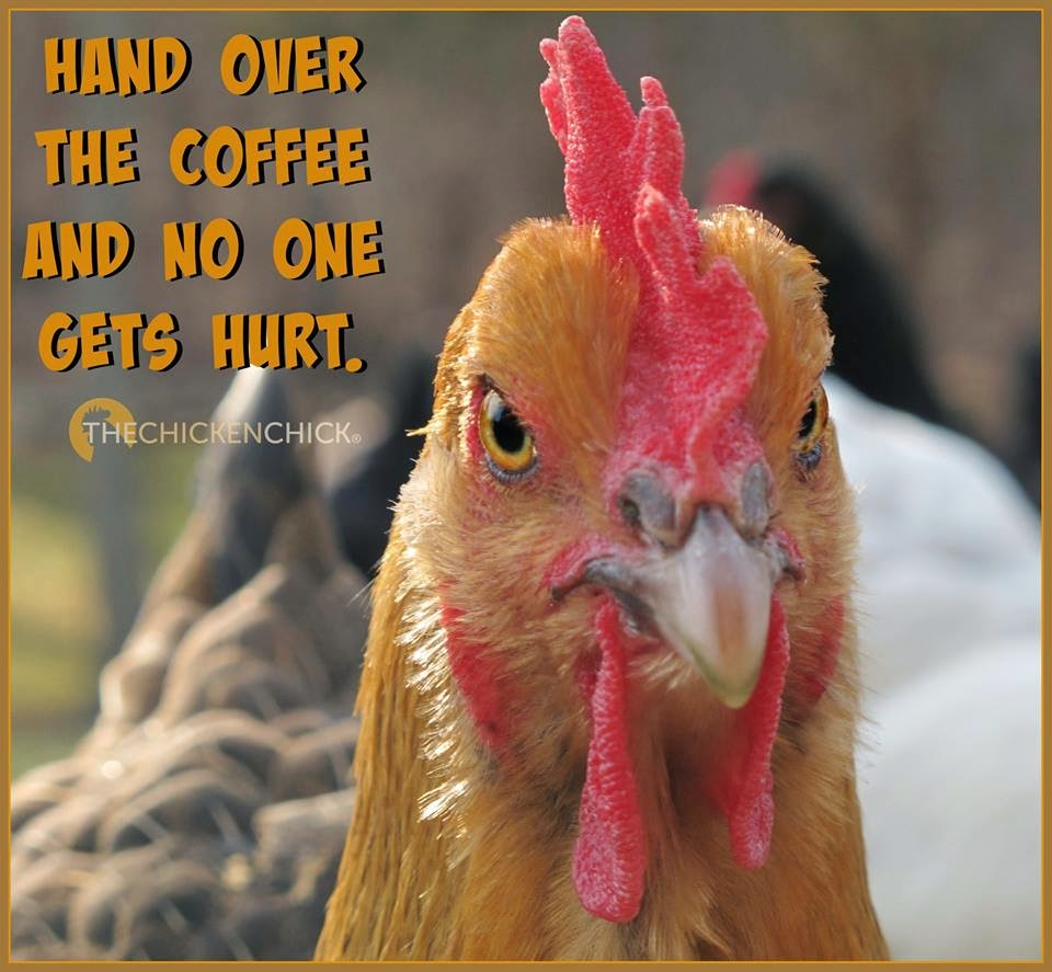 Hand over the coffee and no one gets hurt.