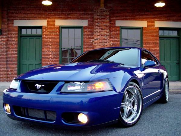 2000 Ford Mustang Cobra R For Sale | newhairstylesformen2014.com