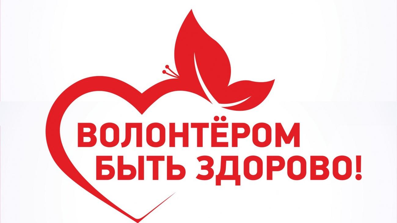 2018 год Волонтёрства