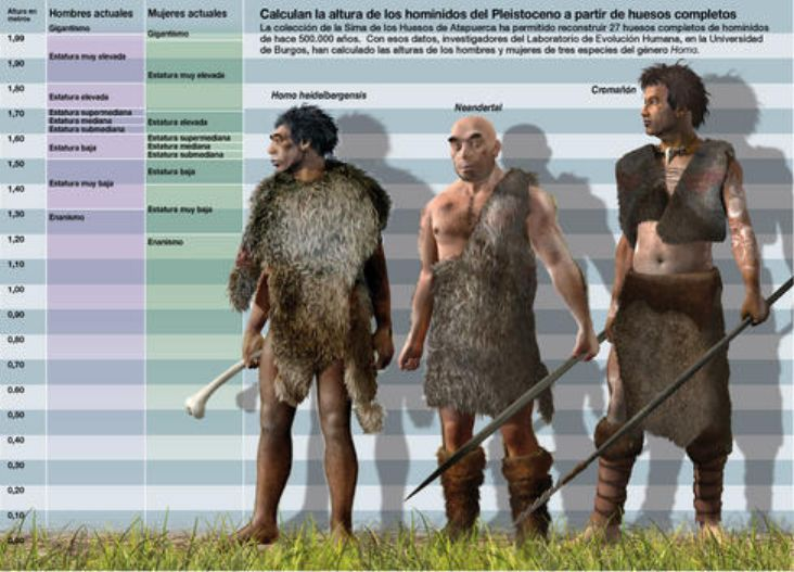an analysis of neanderthals who were sisters species of the homo sapiens which inhabited europe in t 2016-6-13 evolution of modern humans  eventually led to the single homo sapiens species we  and then expanded out into asia and europe, where neanderthals.